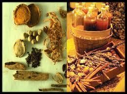 jamu obat tradisional