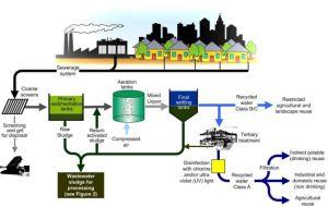 memproduksi minyak secara alami