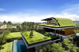 tanami atap rumah