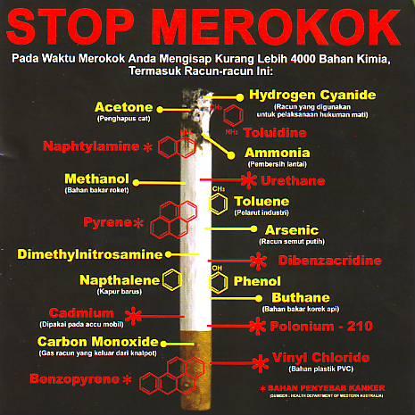 Stop Smoking 38 Tips Ampuh Cara Ingin Berhenti Merokok Norma Web Id