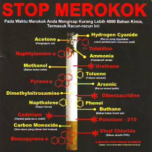 Kandungan Racun pada Rokok