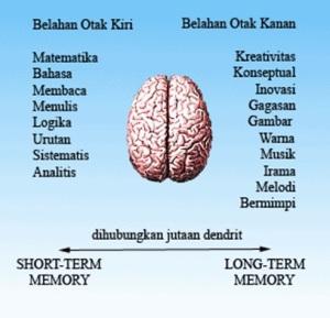 kelebihan otak kanan-kidal